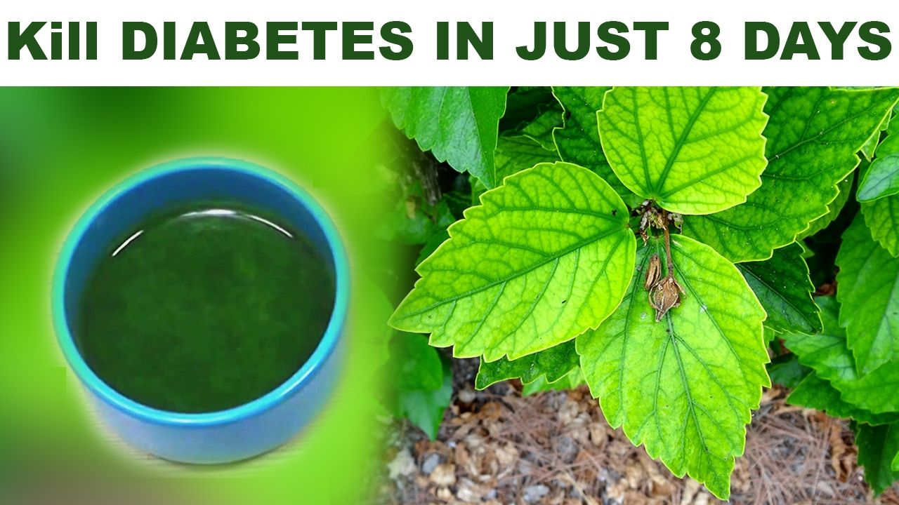 Halki Diabetes treatment is the ideal tool