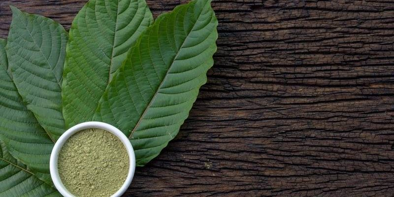 Revolutionize Your Purchase Kratom With All These Simple-peasy Tips